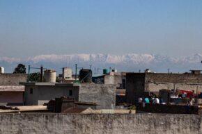 Himalaya viral